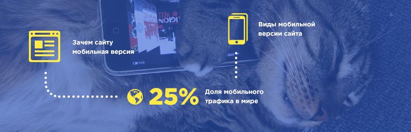 Мобильная версия сайта – нужна ли она вам?