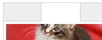 Функциональные CSS вкладки